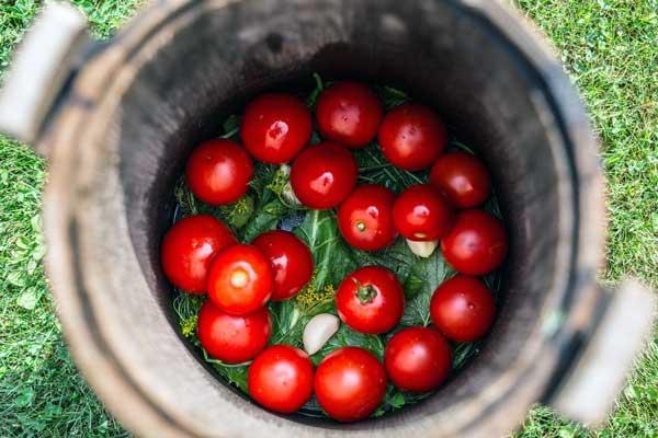 ترشی گوجه فرنگی