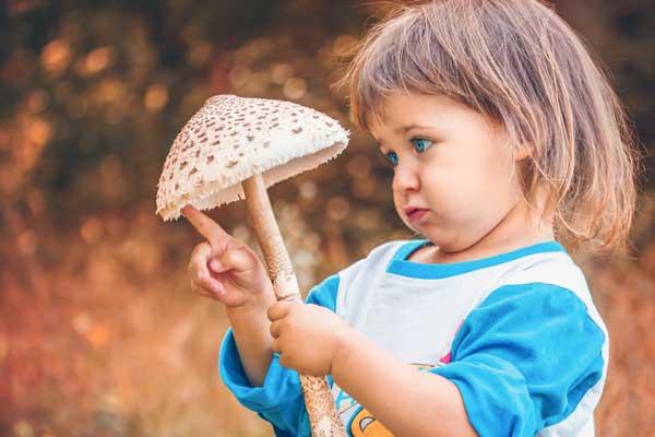 قارچ برای کودکان