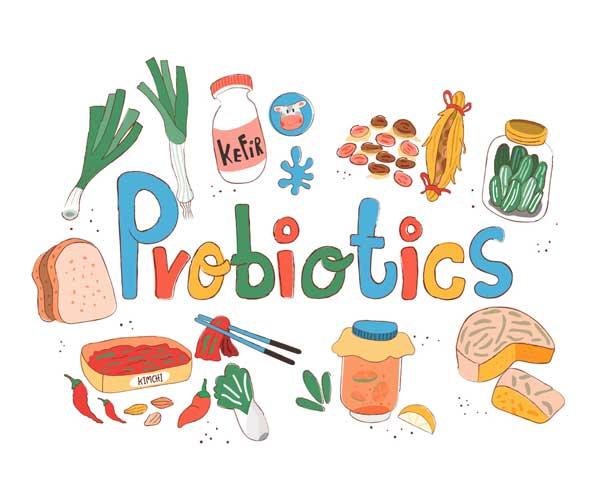 غذاهای پروبیوتیک